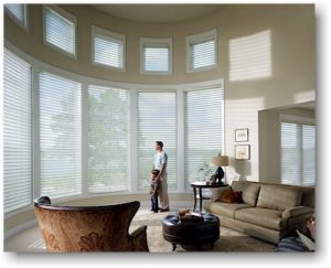 Hunter Douglas Silhouette Shades™
